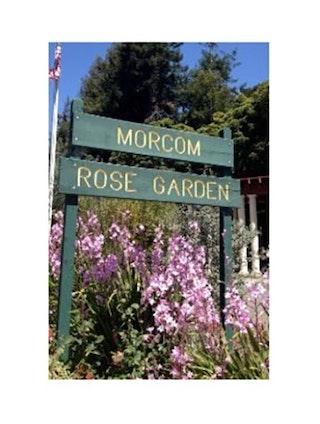 Landmark 45 - Morcom Amphitheater of Roses