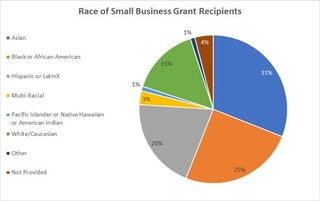Pie chart showing the race of the small business grant recipients